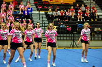 2016 Cheer for a Cure Dayton - Franklin Middle School Cheer - 113