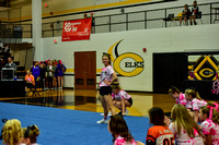 2016 Cheer for a Cure Dayton - Franklin Middle School Cheer - 100