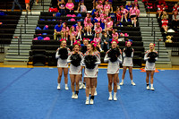 2016 Cheer for a Cure Dayton - Anderson Varsity Cheer - 442