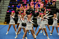 2016 Cheer for a Cure Dayton - Anderson Varsity Cheer - 446