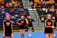 2016 Cheer for a Cure Dayton - Middle School - Waynesville Competition Cheer - 034