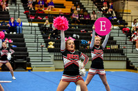 2016 Cheer for a Cure Dayton - Covington Middle School Cheer - 264