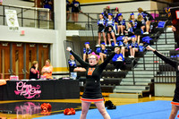 2016 Cheer for a Cure Dayton - Middle School - Waynesville Competition Cheer - 043