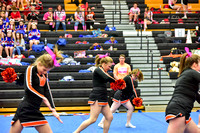 2016 Cheer for a Cure Dayton - Middle School - Waynesville Competition Cheer - 035