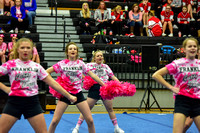 2016 Cheer for a Cure Dayton - Franklin Middle School Cheer - 107