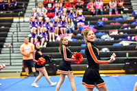 2016 Cheer for a Cure Dayton - Middle School - Waynesville Competition Cheer - 036