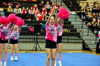 2016 Cheer for a Cure Dayton - Franklin Middle School Cheer - 109