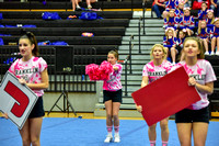 2016 Cheer for a Cure Dayton - Franklin Middle School Cheer - 104