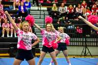 2016 Cheer for a Cure Dayton - Franklin Middle School Cheer - 106