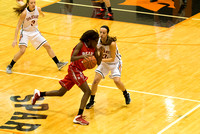 2013-12-14 Waynesville Lady Spartan Basketball vs Northridge-Copyright-Reynolds-Photography-14