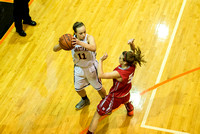 2013-12-14 Waynesville Lady Spartan Basketball vs Northridge-Copyright-Reynolds-Photography-12
