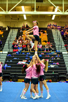 2016 Cheer for a Cure Dayton - Northwest  Varsity Cheer - 063
