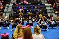 2016 Cheer for a Cure Dayton - Valley View Hip Hop - 940
