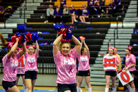 2016 Cheer for a Cure Dayton - Northwest  Varsity Cheer - 066