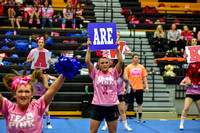 2016 Cheer for a Cure Dayton - Northwest  Varsity Cheer - 068