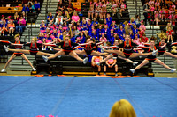 2016 Cheer for a Cure Dayton - Minster Varsity Cheer - 588
