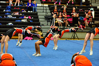 2016 Cheer for a Cure Dayton - Beavercreek Middle School Cheer - 152