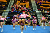 2016 Cheer for a Cure Dayton - Northwest  Varsity Cheer - 058
