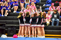 2016 Cheer for a Cure