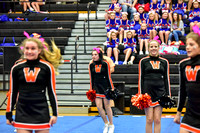 2016 Cheer for a Cure Dayton - Middle School - Waynesville Competition Cheer - 038