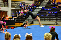 2016 Cheer for a Cure Dayton - Middle School - Waynesville Competition Cheer - 039