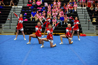 2016 Cheer for a Cure Dayton - Madison Varsity Cheer - 375