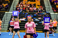 2016 Cheer for a Cure Dayton - Northwest  Varsity Cheer - 067