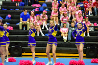2016 Cheer for a Cure Dayton - Bellbrook Middle School Cheer - 352