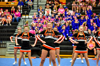 2016 Cheer for a Cure Dayton - Minster Varsity Cheer - 597