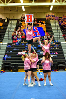 2016 Cheer for a Cure Dayton - Northwest  Varsity Cheer - 071