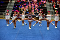2016 Cheer for a Cure Dayton - Anderson Varsity Cheer - 436