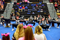 2016 Cheer for a Cure Dayton - Valley View Hip Hop - 939