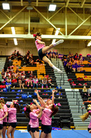 2016 Cheer for a Cure Dayton - Northwest  Varsity Cheer - 076