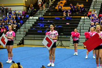 2016 Cheer for a Cure Dayton - Franklin Middle School Cheer - 101