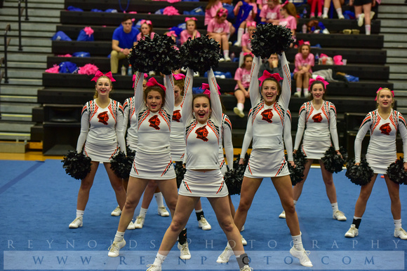 2016 Cheer for a Cure Dayton - Anderson Varsity Cheer - 443