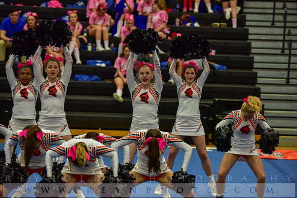 2016 Cheer for a Cure Dayton - Anderson Varsity Cheer - 445