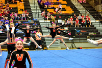 2016 Cheer for a Cure Dayton - Middle School - Waynesville Competition Cheer - 044