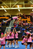 2016 Cheer for a Cure Dayton - Northwest  Varsity Cheer - 074