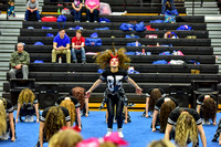 2016 Cheer for a Cure Dayton - Valley View Hip Hop - 937