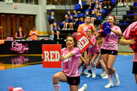 2016 Cheer for a Cure Dayton - Northwest  Varsity Cheer - 072