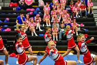 2016 Cheer for a Cure Dayton - Madison Varsity Cheer - 390