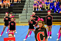 2016 Cheer for a Cure Dayton - Oak Hills Middle School Cheer - 571