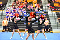 2016 Cheer for a Cure Dayton - Middle School - Waynesville Competition Cheer - 027