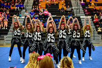 2016 Cheer for a Cure Dayton - Valley View Hip Hop - 950