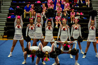 2016 Cheer for a Cure Dayton - Anderson Varsity Cheer - 444
