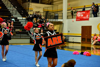 2016 Cheer for a Cure Dayton - Beavercreek Middle School Cheer - 161