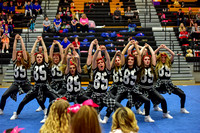 2016 Cheer for a Cure Dayton - Valley View Hip Hop - 952